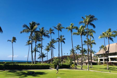 Escape to Maui for Business